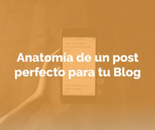 Anatomia-post-perfecto-blog